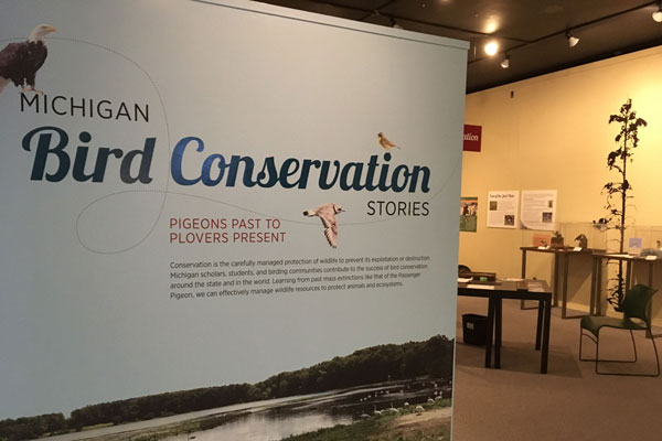 Image of Bird Conservation Exhibition