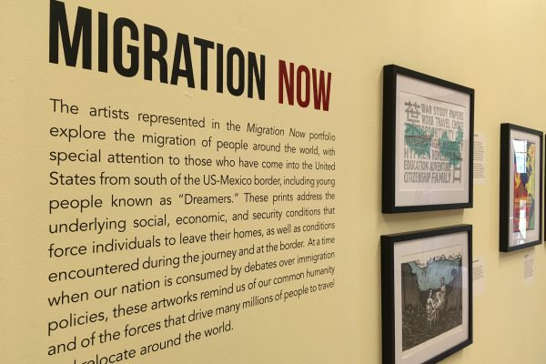 photograph of the exhibit Migration Now