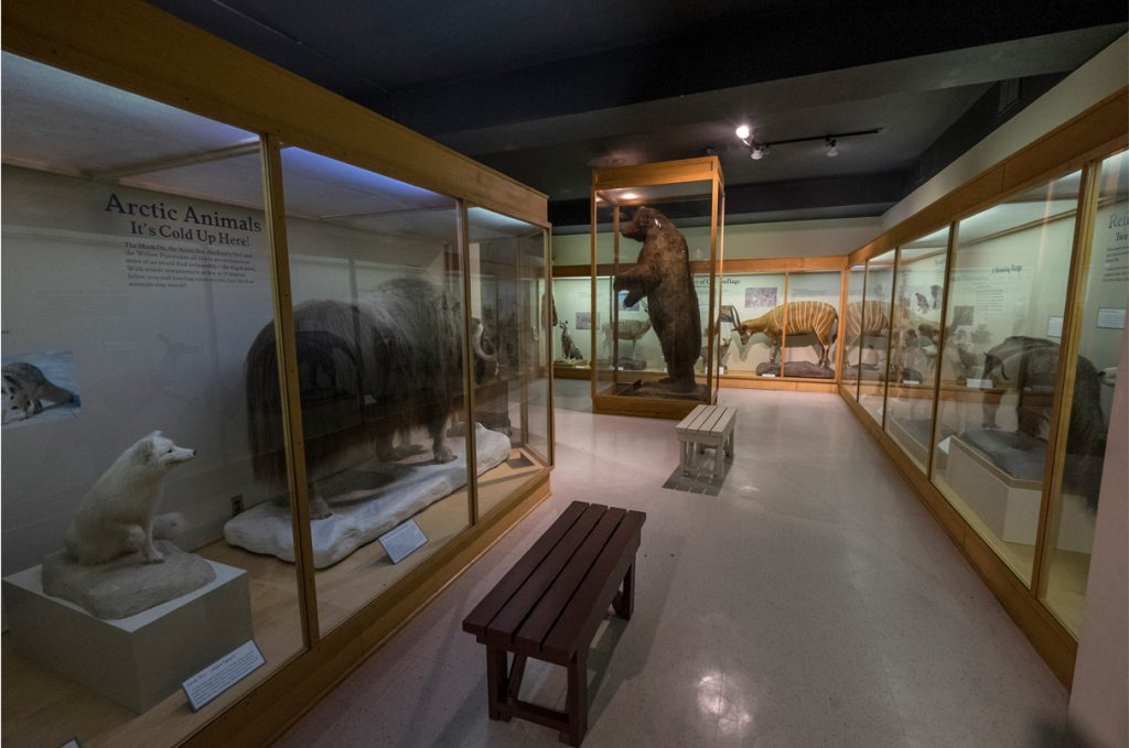 Image of Exhibition