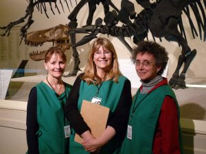 Image of docents