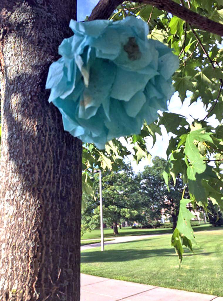 Teal paper flower