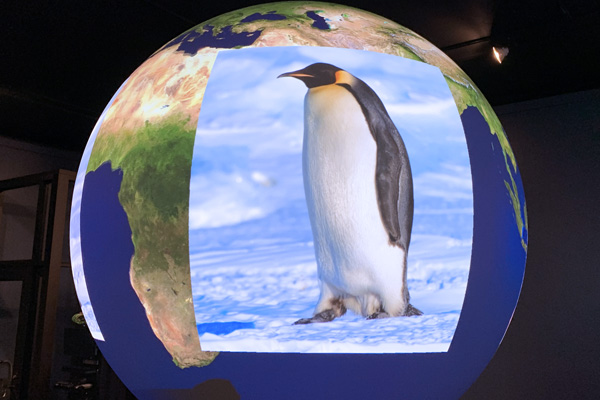 Mystery of the Penguin Feather - Science On a Sphere