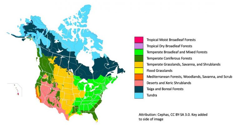Color-coded North American biome map