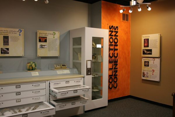 Museum exhibit showing open drawers of specimens and objects