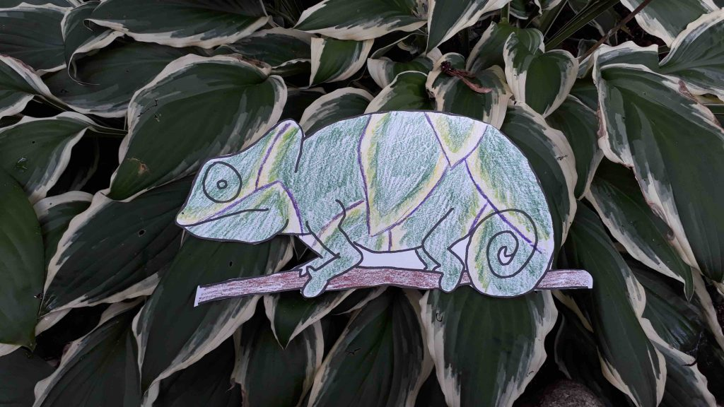 Paper drawing of chameleon colored to blend into leaves