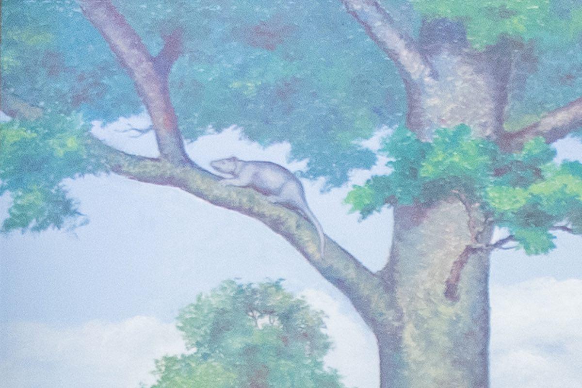 Painting of opossum in tree in Paleocene Epoch